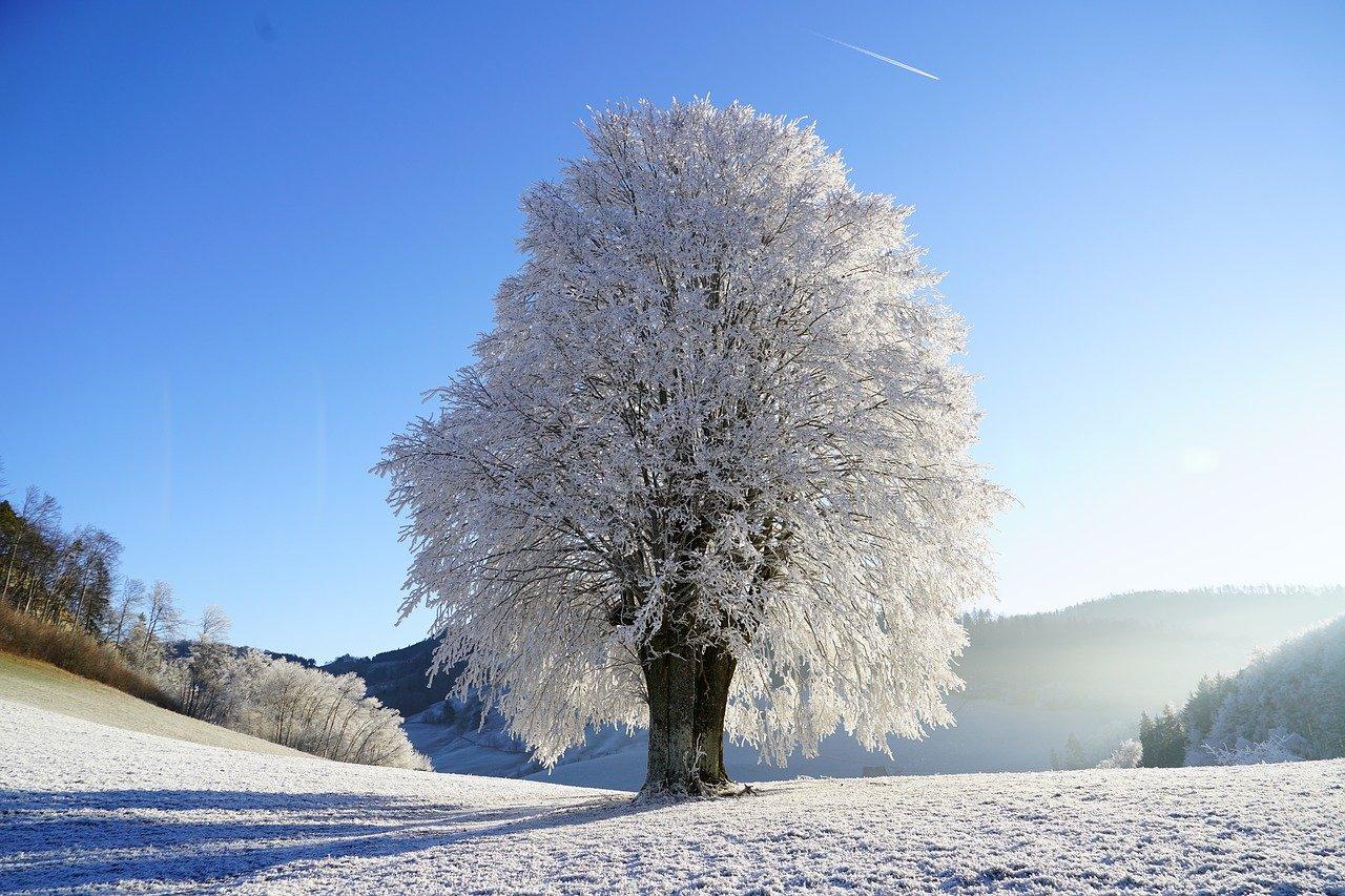 Onwerkbaar weer door sneeuw; wat moet u weten?